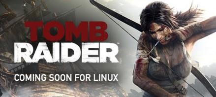 tomb-raider-linux-1